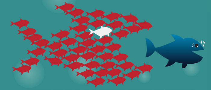 Meet the on demand customer - keep up with the big fish!